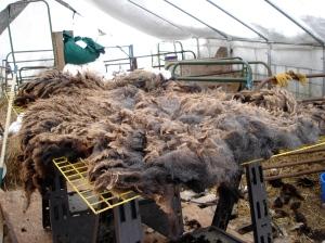 Skirting table with Mae's fleece