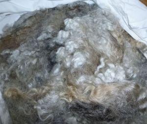Beezus' fleece