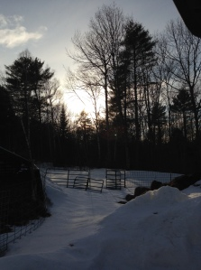 As chores ended, the sun was at its best