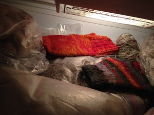Inside the freezer.  The wool mess takes over!