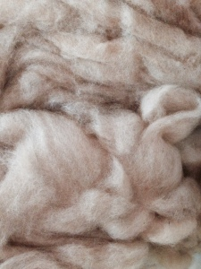 White Coopworth/Beigey Alpaca roving