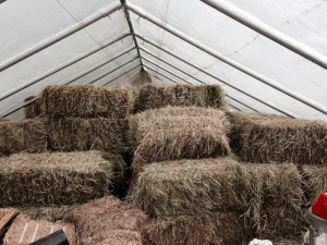 Hay stacked in the greenhouse