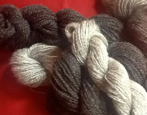 Silver and brown Coopworth yarn, sport weight