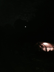 Super moon over one of our greenhouses