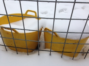 Old, unheated water buckets.  For summer use only!