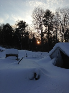 Sunset in the snowy bluster