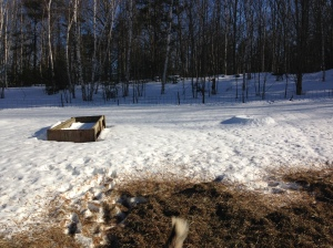 Bunker feeders beginning to emerge from the snow