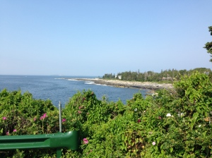The view from lighthouse park where I released the pigeons for training the other morning
